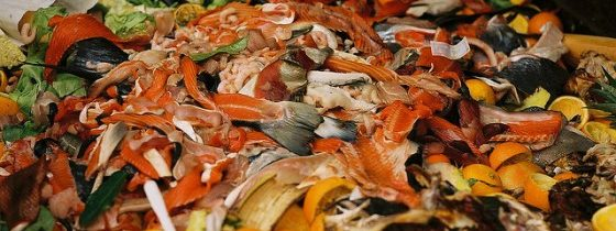 Food Waste – A Huge Problem for the Climate – One We Can Do Something About