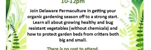 Southbridge Community Garden Workshop and Volunteer